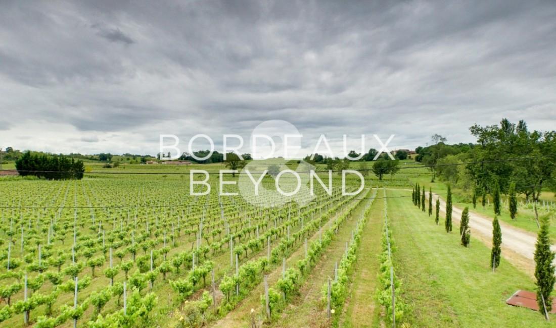GIRONDE BORDEAUX Chateaux/vineyards for sale