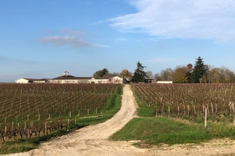 Prestigious vineyard in the Haut Medoc appellation with 82 hectares of vines, wine cellars with cement and inox vats, barrel chai, storage and all the materiel vini/viti, plus Maison de Maitre, guardian's house, apartment and offices.